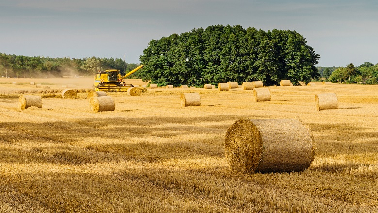 hay bales in a field with a tractor