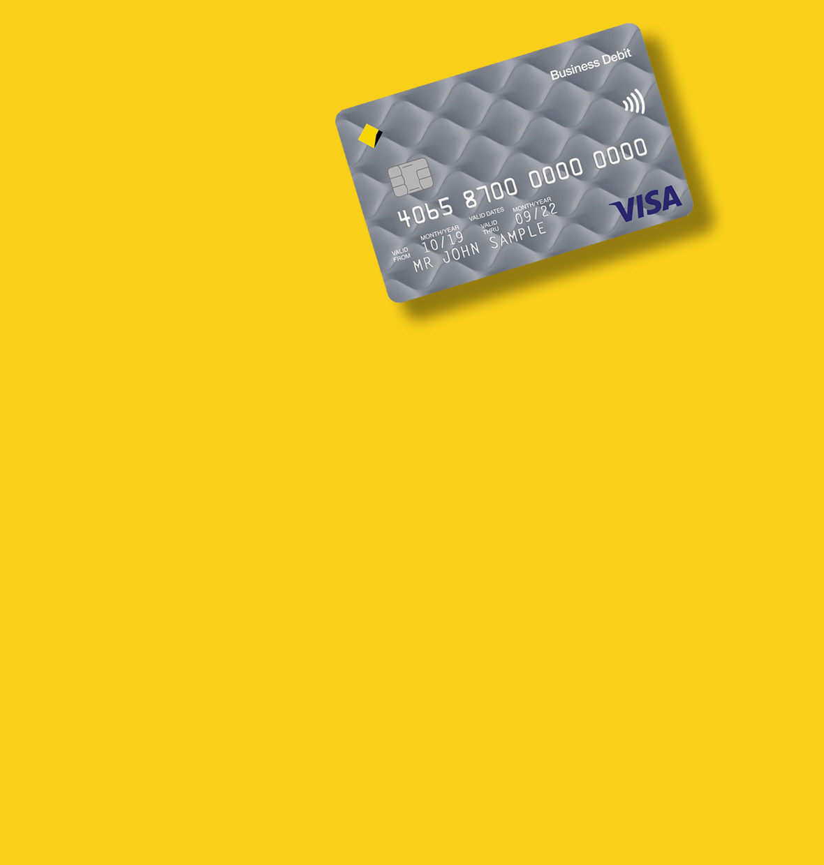 Business Visa Debit Card