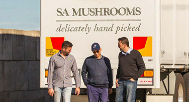 Staff at SA Mushrooms