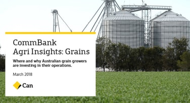 Agri Insights: Grains March 2018