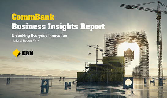 Business Insights Report