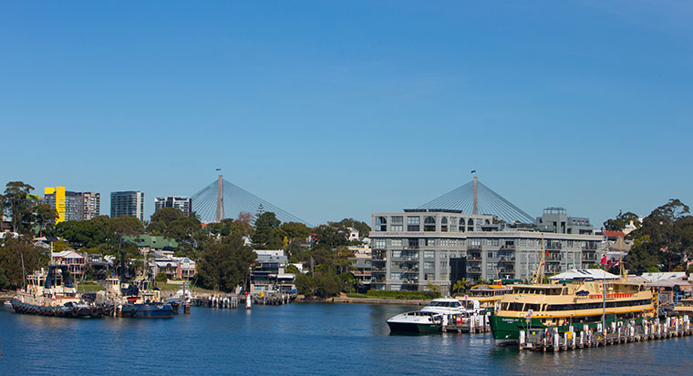 Sydney Harbour and Anzac Bridge